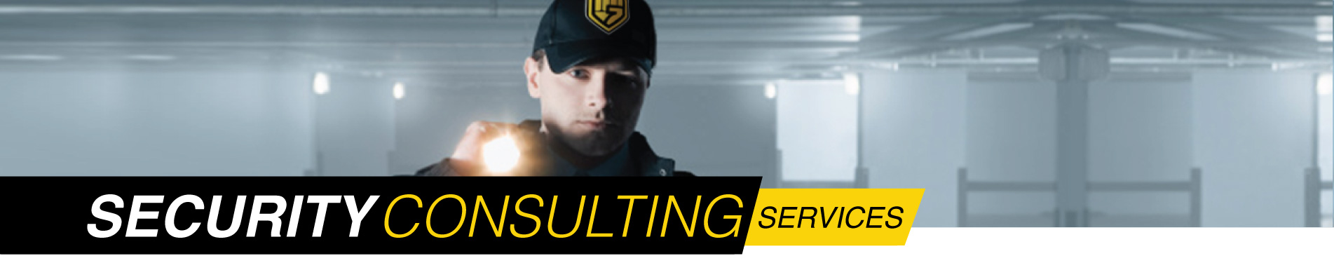 Houston area security consulting services